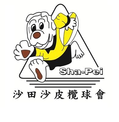 Shapei-Logo-A.jpg#asset:18772:url
